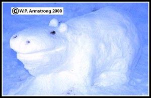 snow_hippo